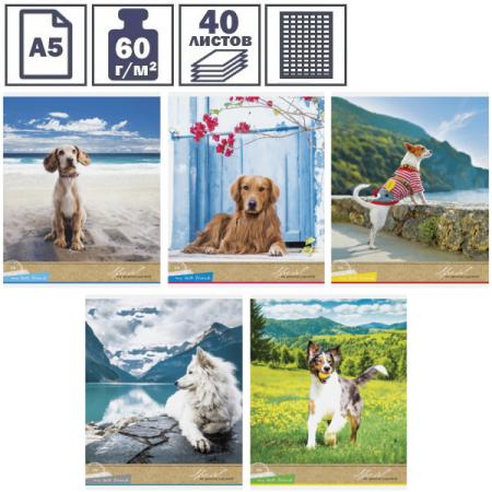 """Тетрадь А5 в клетку на скрепке ArtSpace """"Питомцы. Собаки. My best friend"""", 40 листов"""