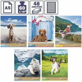 """Тетрадь А5 в линейку на скрепке ArtSpace """"Питомцы. Собаки. My best friend"""", 48 листов"""