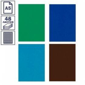 Тетради общие с цветной обложкой, 48 листов, в ассотименте