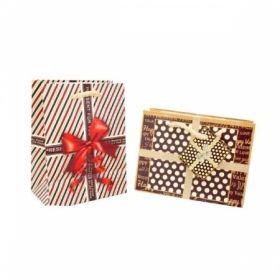 Пакет подарочный с матовым покрытием, размер S, 2 дизайна
