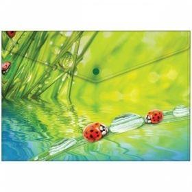 """Папка-конверт на кнопке Berlingo """"Ladybird"""", 180 мкм"""