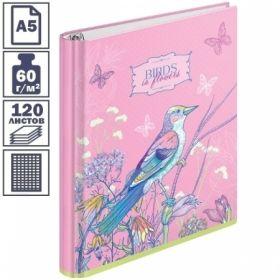 "Тетрадь на кольцах А5 7БЦ ArtSpace ""Цветы. Birds in flowers"", 120 листов"
