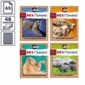 Тетрадь А5 в клетку на скрепке БиДжи БЕЗ ПАНИКИ!, 48 листов