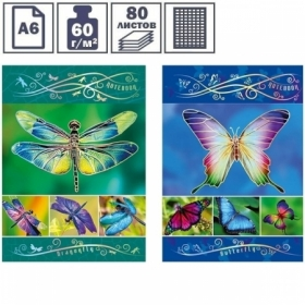 "Бизнес-блокнот А6 BG ""Rainbow wings"", 80 листов"