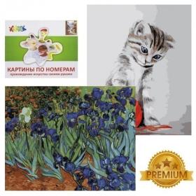 """Картины по номерам """"Цветной"""" серии Премиум, 40 х 50 см в ассортименте"""