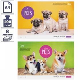 """Альбом для рисования А4 ArtSpace """"Питомцы. Favorite pets"""" на скрепке, 8 листов"""